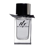 BURBERRY MR BURBERRY 100ML for Men